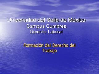 Universidad del Valle de M xico Campus Cumbres Derecho Laboral