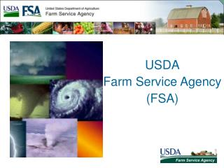 USDA  Farm Service Agency  FSA