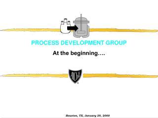 PROCESS DEVELOPMENT GROUP At the beginning .