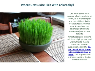 Wheat Grass Juice Rich With Chlorophyll