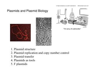 Plasmids and Plasmid Biology