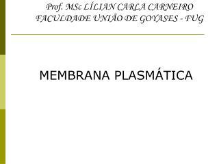 Prof. MSc L LIAN CARLA CARNEIRO FACULDADE UNI O DE GOYASES - FUG