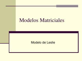 Modelos Matriciales