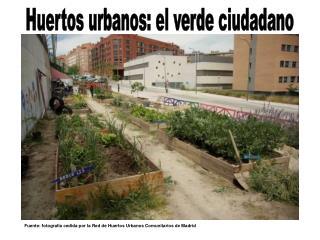 Huertos urbanos: el verde ciudadano