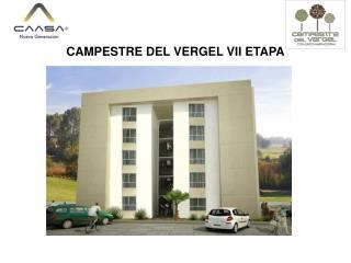 CAMPESTRE DEL VERGEL VII ETAPA