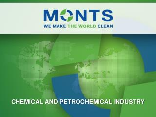 CHEMICAL AND PETROCHEMICAL INDUSTRY