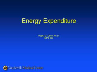 Energy Expenditure   Roger D. Cone, Ph.D. MPB 333