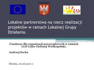 Lokalne partnerstwa na rzecz realizacji projekt w w ramach Lokalnej Grupy Dzialania.