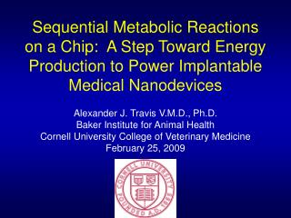 Sequential Metabolic Reactions on a Chip:  A Step Toward Energy Production to Power Implantable Medical Nanodevices