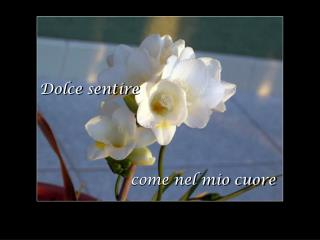 Dolce sentire