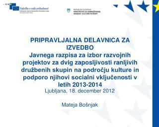 PRIPRAVLJALNA DELAVNICA ZA IZVEDBO Javnega razpisa za izbor razvojnih projektov za dvig zaposljivosti ranljivih dru beni