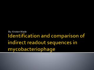Identification and comparison of indirect readout sequences in mycobacteriophage