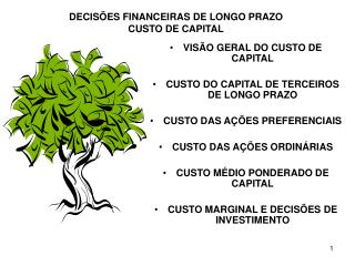 DECIS ES FINANCEIRAS DE LONGO PRAZO CUSTO DE CAPITAL