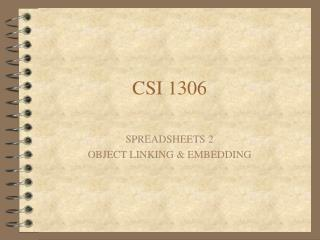 CSI 1306