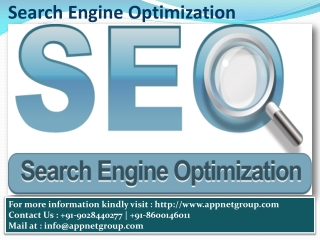 Search Engine Optimization Service|AppNET Group Nagpur