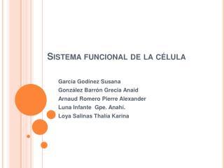Sistema funcional de la c lula