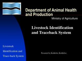 department of animal health and production