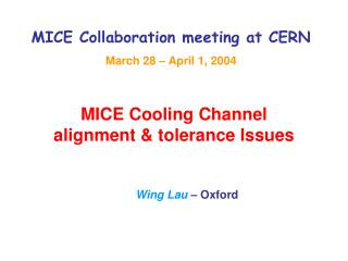 MICE Collaboration meeting at CERN March 28   April 1, 2004