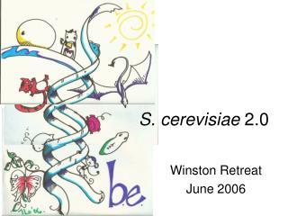 S. cerevisiae 2.0