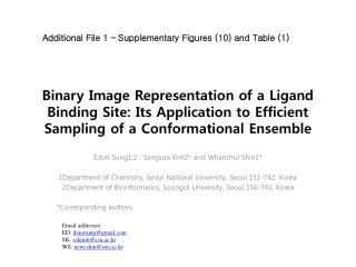 Binary Image Representation of a Ligand Binding Site: Its Application to Efficient Sampling of a Conformational Ensemble