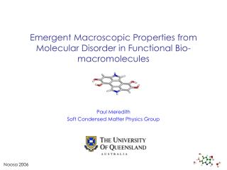 Emergent Macroscopic Properties from Molecular Disorder in Functional Bio-macromolecules