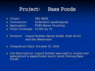Project: Bass Ponds