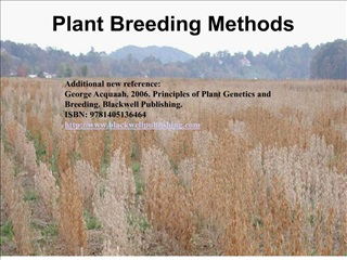plant breeding methods