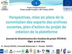 Perspectives, mise en place de la commission des experts des archives ouvertes, plan d action du projet de cr ation de l