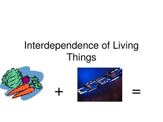 Interdependence of Living Things