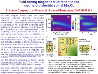 Frustrated magnets exhibit novel and useful properties, including dramatic field-sensitive properties and suppressed mag