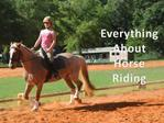 Everything about the Horse Riding