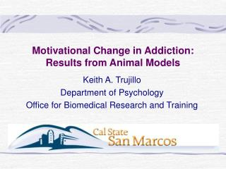 motivational change in addiction:  results from animal models