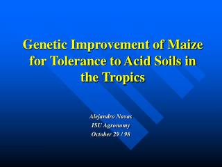 Genetic Improvement of Maize for Tolerance to Acid Soils in the Tropics