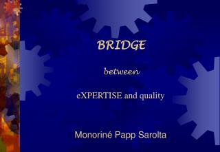 BRIDGE  between    eXPERTISE and quality   Monorin  Papp Sarolta