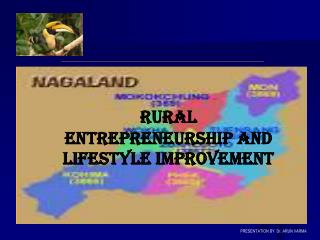 Nagaland   common perceptions