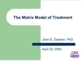 the matrix model of treatment