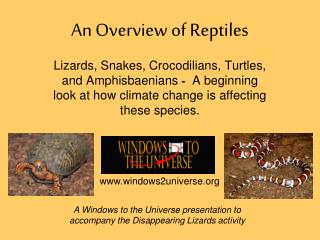 An Overview of Reptiles