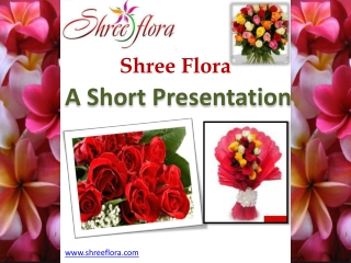 Send Flowers To india With Renowned FLorists