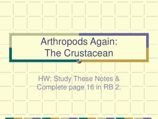 Arthropods Again: The Crustacean