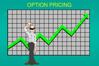Future  Options Basics  Trading Strategies