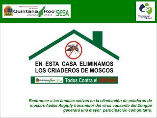 Reconocer a las familias activas en la eliminaci n de criaderos de moscos Aedes Aegipty transmisor del virus causante de