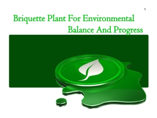 Briquette Plant For Environmental Balance and Progress