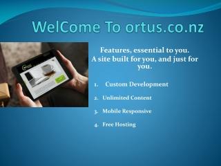Dunedin Web Development