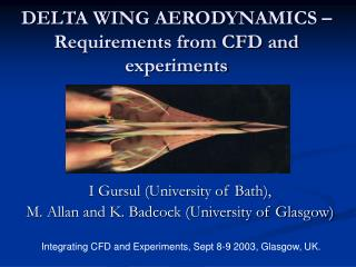 DELTA WING AERODYNAMICS   Requirements from CFD and experiments
