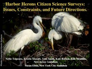 Harbor Herons Citizen Science Surveys: Issues, Constraints, and Future Directions.