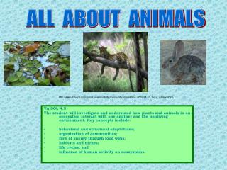 VA SOL 4.5  The student will investigate and understand how plants and animals in an ecosystem interact with one another