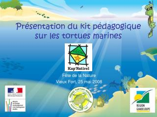 Pr sentation du kit p dagogique  sur les tortues marines
