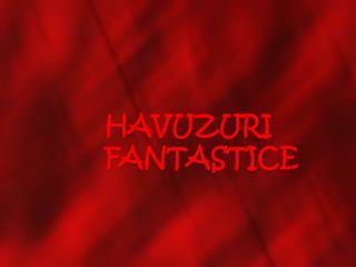 HAVUZURI FANTASTICE