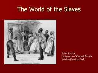 The World of the Slaves