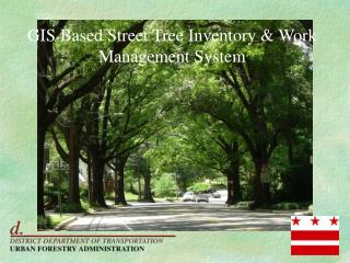 GIS Based Street Tree Inventory  Work Management System